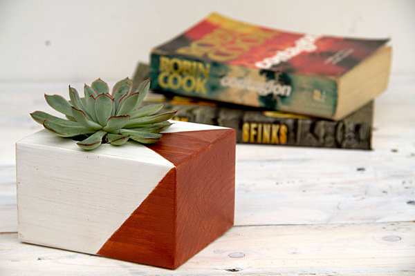 Painted wooden succulent planter
