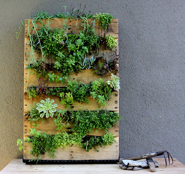 Palette garden planter living wall