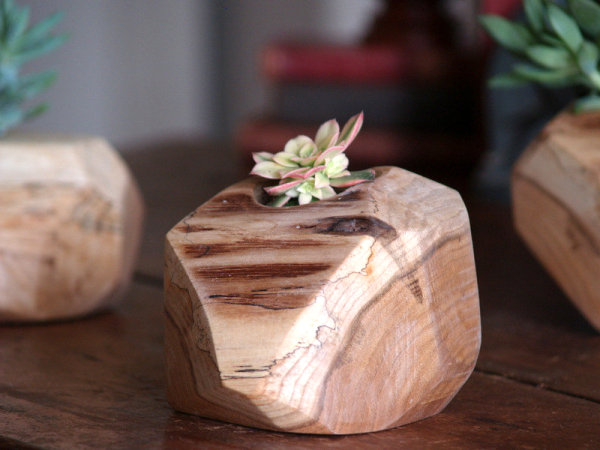 Rustic cactus pot 10 Modern Planters That Welcome The Spring In Style
