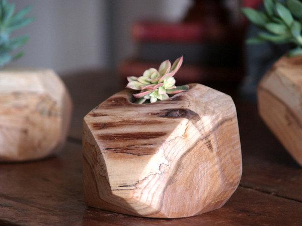 Rustic cactus pot