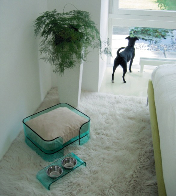 The Mija Plexi Glass Dog Bed from Bowwow3 Modern Pet Furniture That Will Look Great In Your Home