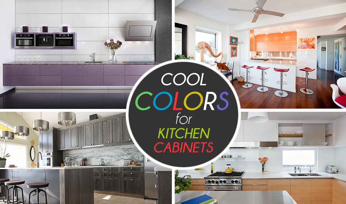 View In Gallery Cool Colors Kitchen Cabinets