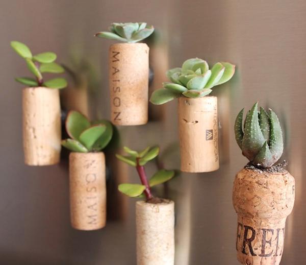 cork planter diy