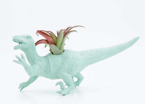 dinosaur planter toy