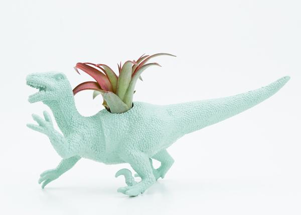 dinosaur planter toy
