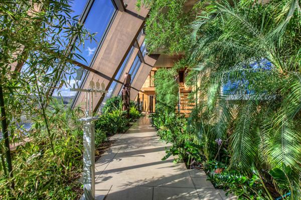 penthouse greenhouse 2