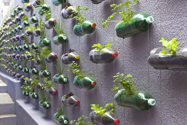 soda bottle modern planter 2