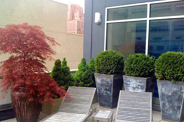 Artful planters on a rooftop garden