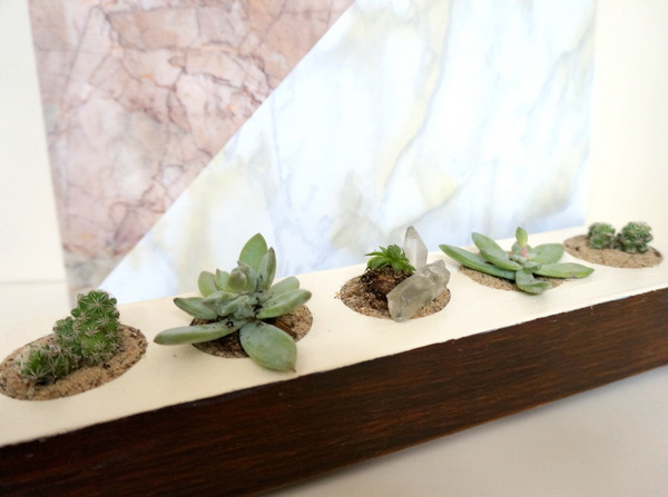 DIY succulent planter on display