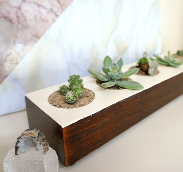 DIY succulent planter with a painted top