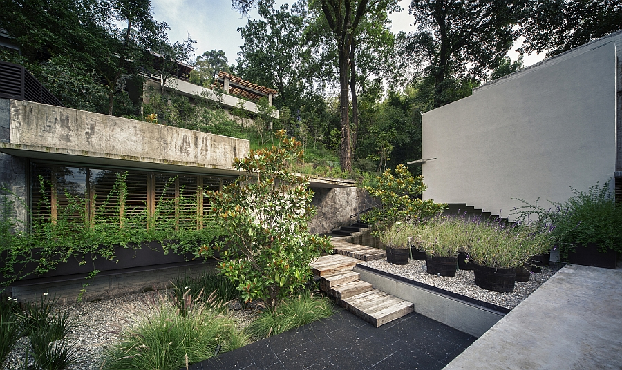 Interior courtyard filled with greenery