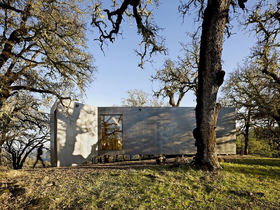Metallic exterior of the house