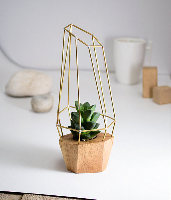 Modern polygon planter