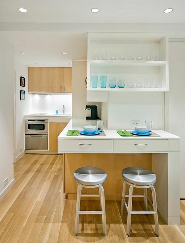 Tiny kitchen idea for an urbane micro-apartment