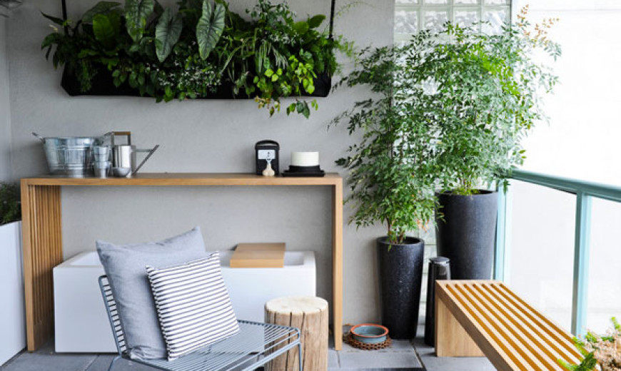 Hanging Plants and Soil-less Vegetation For Green Homes