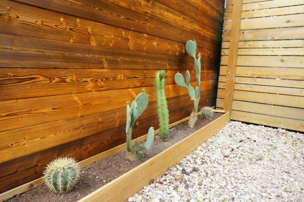 A cactus planter adds to the home's contemporary charm