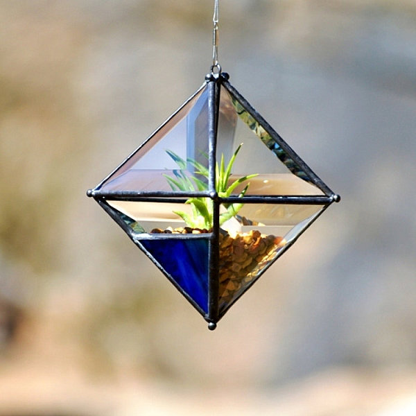 Beveled glass air plant holder