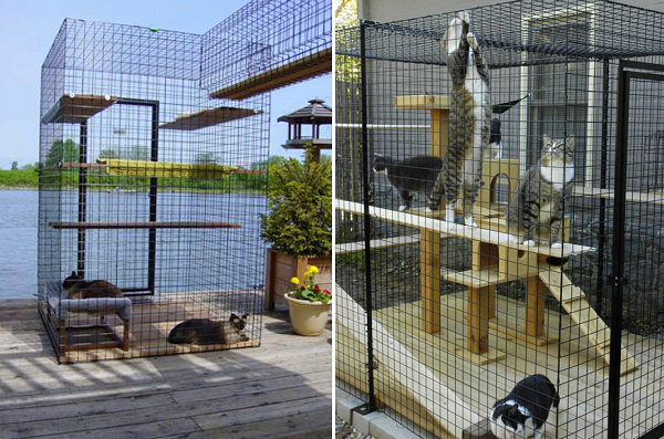 View in gallery Cat enclosures from Home of Habitat Haven - Give Your Feline Friend Safe Access To The Outdoors With A Catio