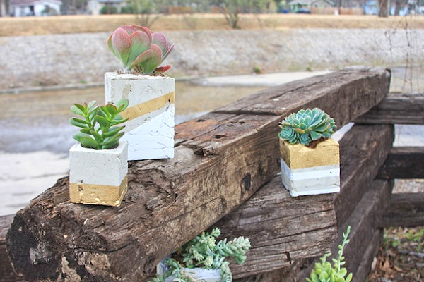 Cement planters with gold embellishments