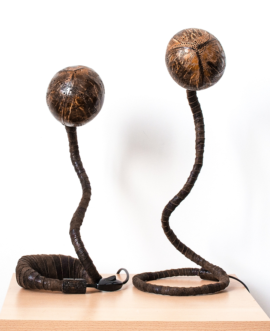 Creative form of the organic Nymphs lamps