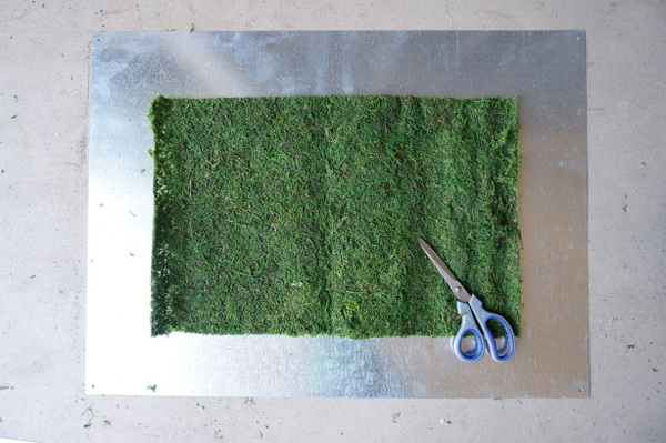Cutting the moss