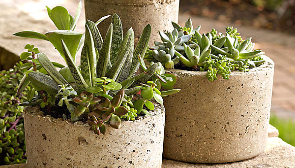 DIY pots from Lowe's