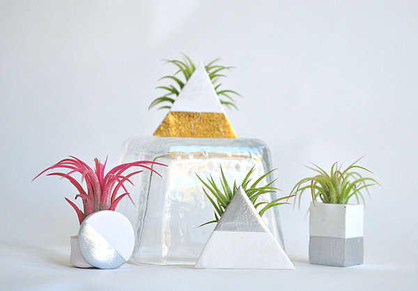 Geometric metallic air plant holders