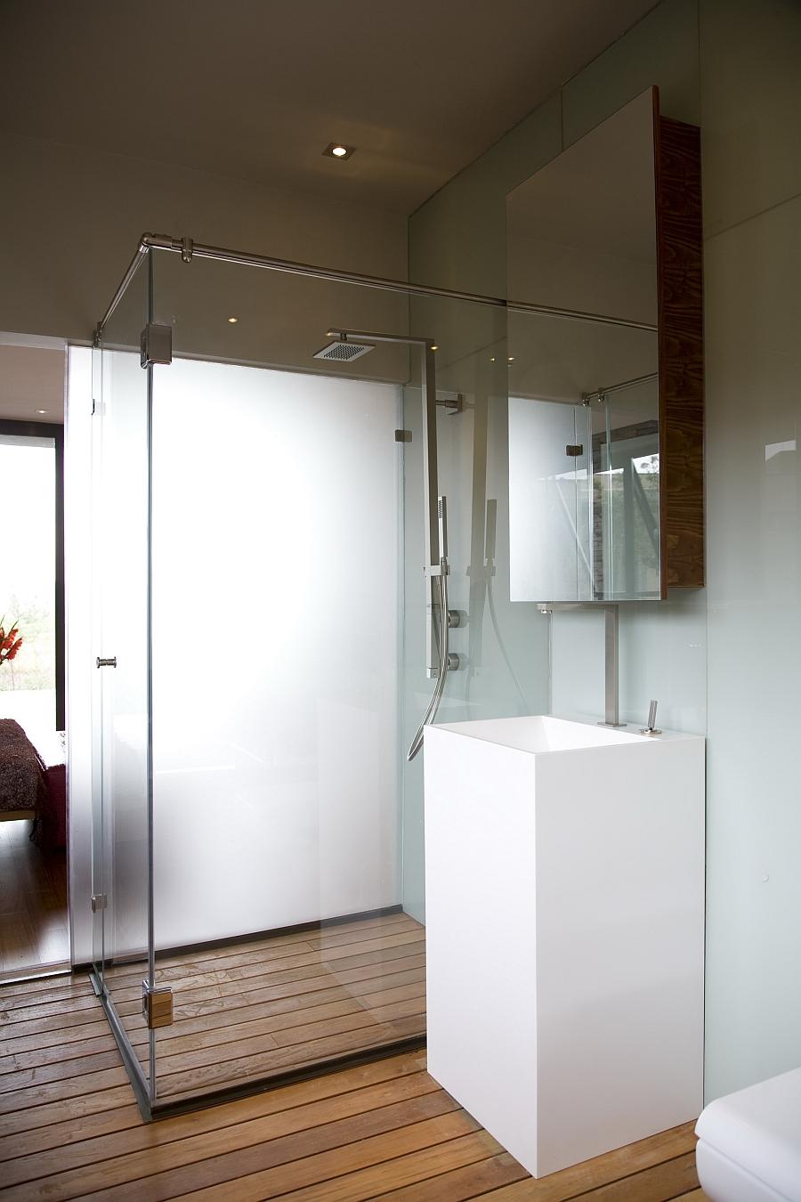 Glass shower enclosure idea for modern bathroom