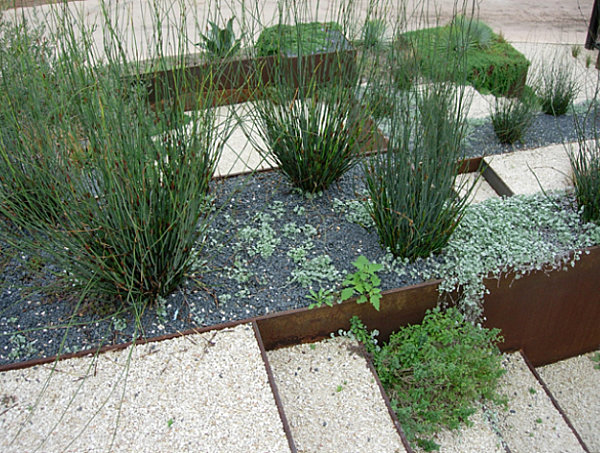 Layers of xeriscaping in a modern yard