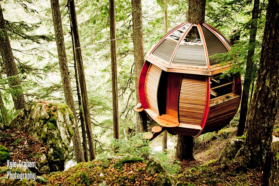 Lovely treehouse allows you to stay connected with nature
