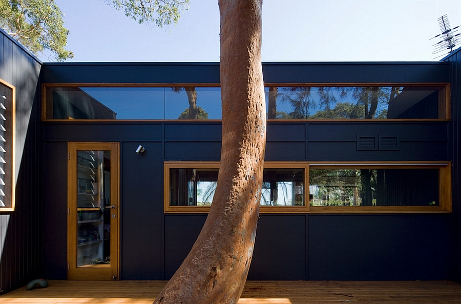 Lovely use of windows to add visual contrast to the exterior