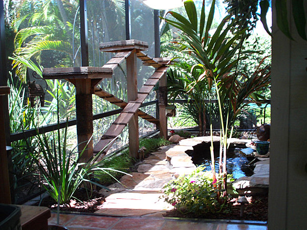View in gallery Lush Florida catio - Give Your Feline Friend Safe Access To The Outdoors With A Catio