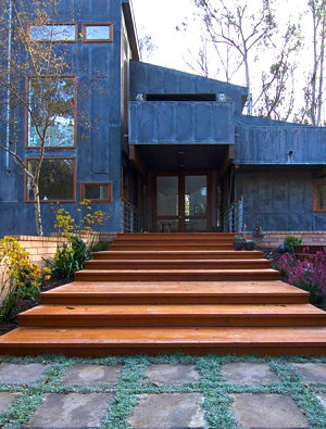 Modern landscaping near steps in a modern yard