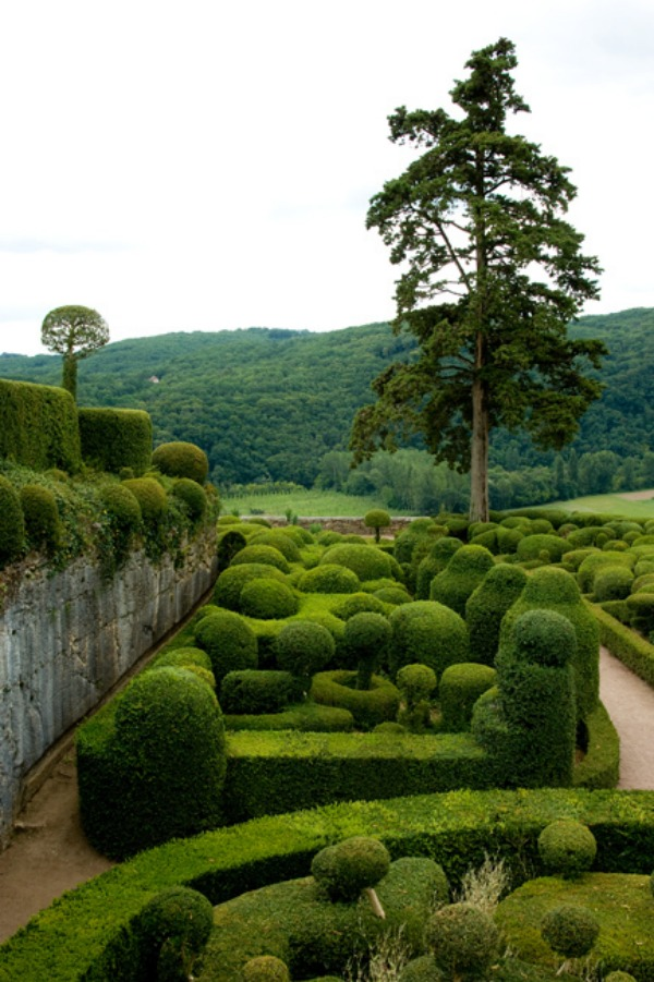 Ornate boxwood garden