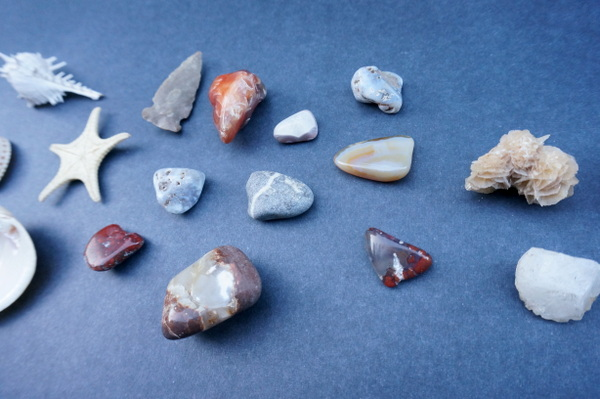 Rocks, minerals and shells