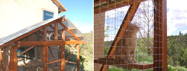 Rustic catio design