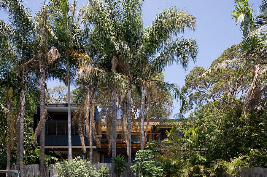 Stylish modern Aussie Home draped in plenty of natural green