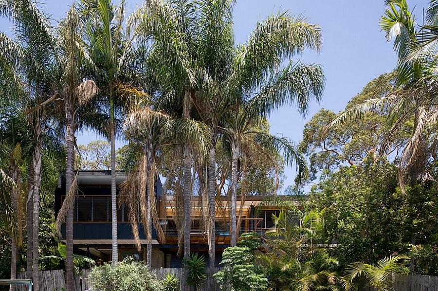 Stylish modern Aussie Home draped in plenty of natural green