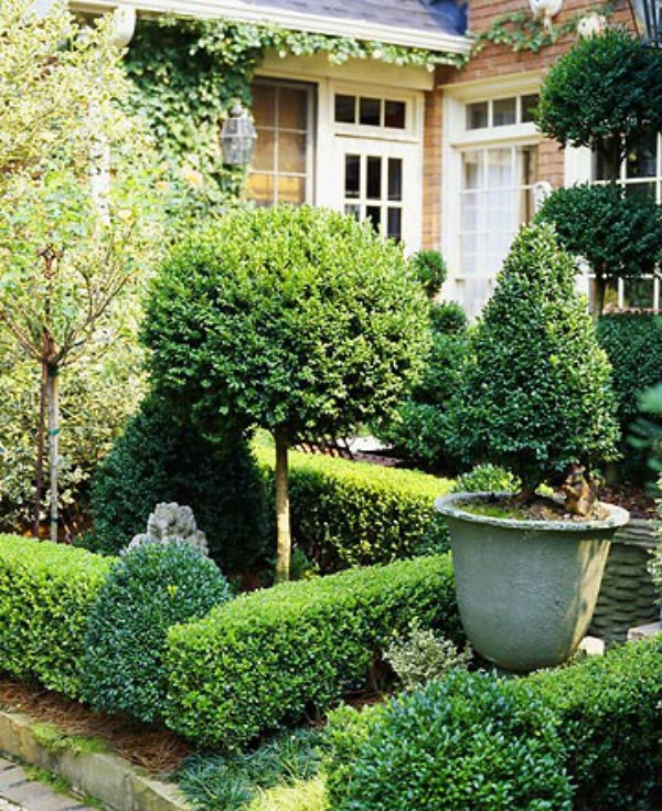 Superbe View In Gallery Sweet Boxwood Garden