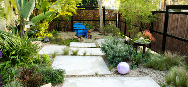 Xeriscaping in a lush backyard