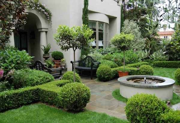 beautiful landscape with boxwood