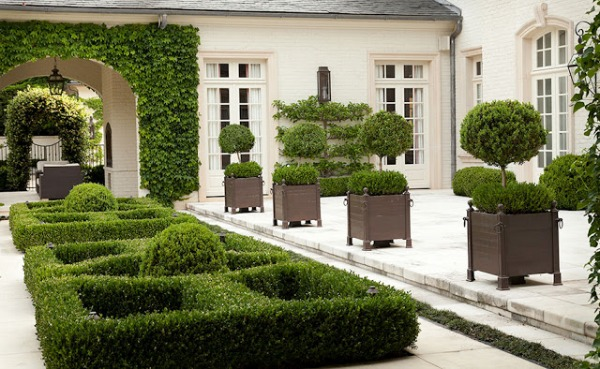 potted and low boxwood garden