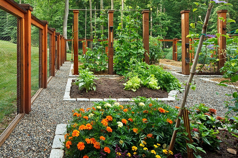 A vegetable and flower garden idea for the summer