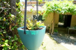 Aqua DIY hanging planter