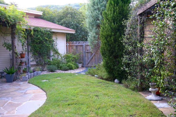Backyard layout with trees, vines and gravel