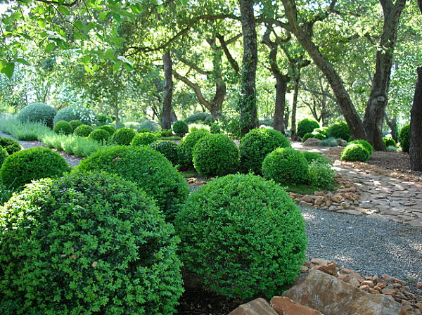 Boxwood trim in a soothing garden