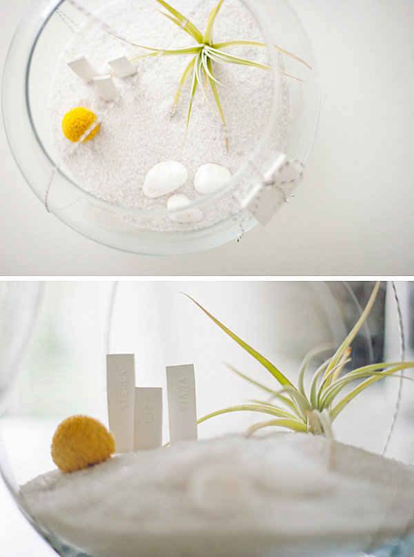 DIY air plant terrarium gift idea