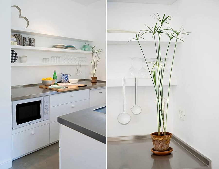 Decorating the kitchen with some natural green