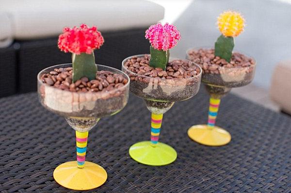 Dish gardening idea
