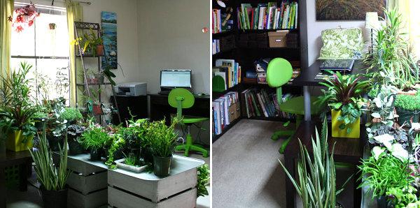 Extensive indoor garden
